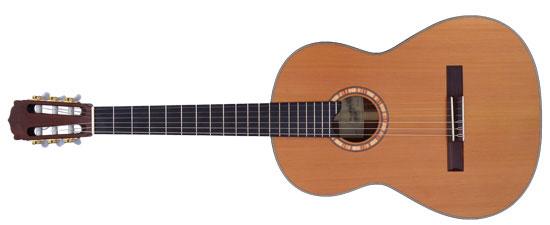 instrumente guitar colour system klassenmusizieren mit gitarren. Black Bedroom Furniture Sets. Home Design Ideas